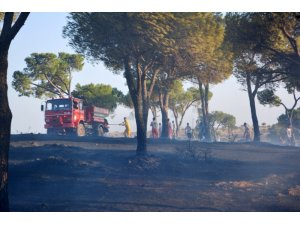 Orman yangınlarıyla mücadelede yeni dönem