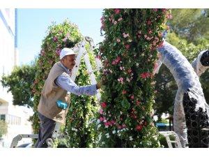 Haliliye'de parklar peyzajla süsleniyor