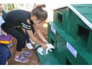 """Örnek projeyle """"Kedi ve köpekler"""" okul bahçesinde"""