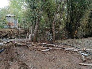 Bingöl'de taşkın ahıra zarar verdi