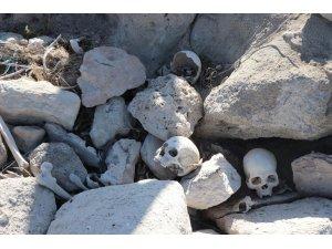 Suların çekilmesiyle ortaya çıkan kafataslarını belediye ekipleri mezarlığa defnetti