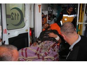 Erzurum'da çobana ayı saldırdı