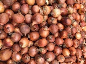 Bangladeş'te soğan krizi