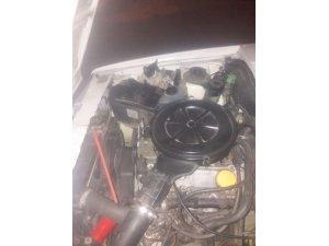 Soğuktan üşüyen yavru kediler aracın motorundan çıktı