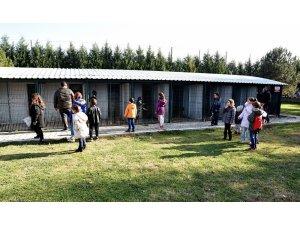Ara tatildeki 600 çocuk Doğal Yaşam Merkezini ziyaret etti