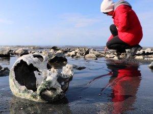Van Gölü'nde insan kemikleri bulundu