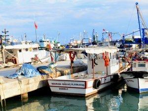 Balon balıkları Adana'yı terk etti
