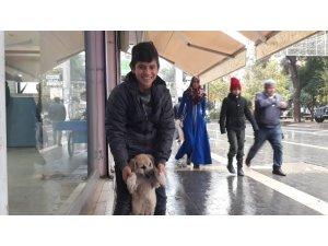 Kızıltepeli çocuk yiyeceğini sokak köpeği ile paylaştı