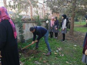 Gönüllü öğrenciler okul bahçesine ağaç dikti