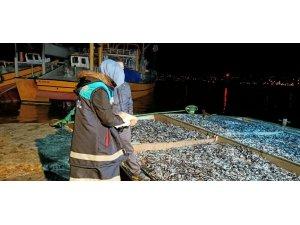 Rize'de 25 ton hamsiye el konuldu