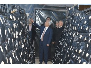 Kırıkkale'de 2 çiftçiye mantar üretim tesisi kuruldu