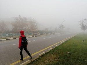 Manisa'da sis etkili oluyor