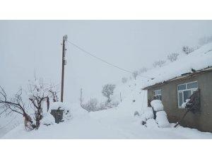 Sason'da kar yağışı ulaşımı olumsuz etkiledi