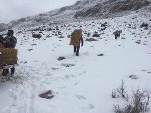 Niğde'de Dağ keçileri yemlendi