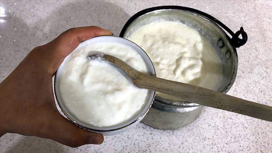 Gribin ilacı yoğurt mu?