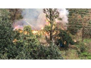 Rize'de ahır yangını