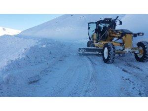 Bingöl'de kar 178 köy yolunu ulaşıma kapattı