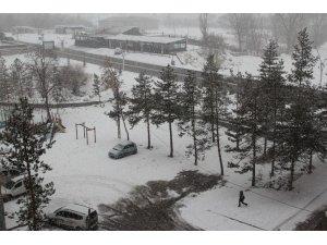 Soğuk hava yerini kar yağışına bıraktı