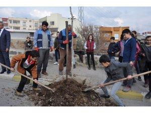 Cizre Belediyesi yeşil bir gelecek için çalışıyor