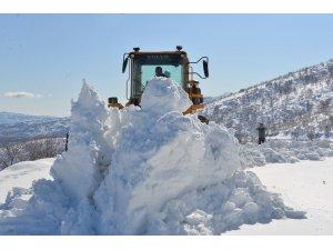 Bingöl'de karla mücadele, 197 köy yolunun açılması için çalışma yürütülüyor