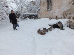 Sokak hayvanlarına mama dağıttı