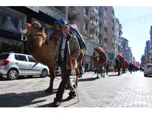 Torbalı'da develer kortej yürüyüşünde boy gösterdi