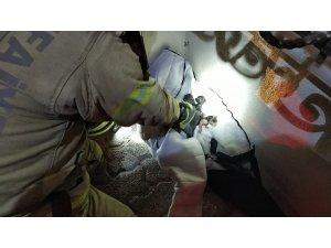 Yangında mahsur kalan kedi yavrularını önce kurtardı sonra elleriyle yıkadı