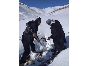 Karlı dağlarda içme suyu mesaisi