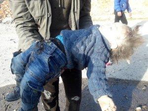 Halep kırsalında saldırılardan kaçan aile, Rus savaş uçaklarının saldırısında hayatını kaybetti