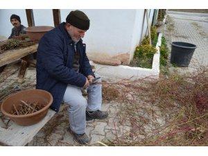 Artvin'de orman köylüsü için 27 bin gelir getirici fidan