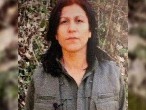 PKK'nın kadın yapılanmasına ağır darbe