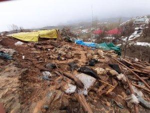 Bingöl'de 2 ahır çöktü, 40 küçükbaş hayvan telef oldu