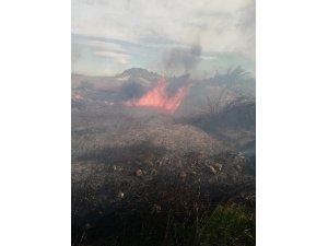 Antalya'da sazlık yangınında 30 dönüm alan zarar gördü