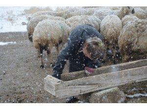 11 yaşındaki Kardelen, korona virüs tatilinde çobanlık yapıyor