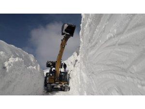 Mergezer Yaylası'nda 11 metreyi bulan karla mücadele ediyorlar