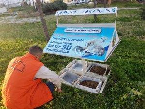 Turgutlu'da sokak hayvanları da unutulmadı