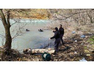 Tunceli'de ekipler 2 kaybı birlikte arıyor
