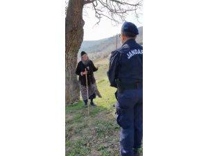 Jandarma dağda hayvan otlatan yaşlı kadını böyle uyardı