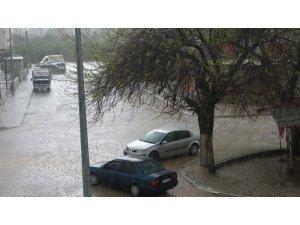 Araçlarını ağaçların altında doludan korudular