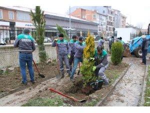 Kütahya Orman Bölge Müdürlüğünden ağaçlandırma çalışmaları