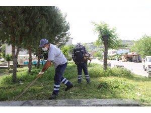 Efeler'de yeşil alanların bakımı devam ediyor