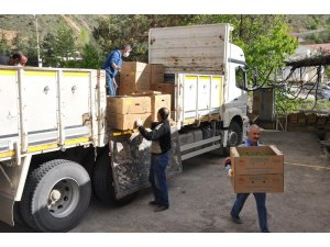 Gümüşhane'de çiftçilere 283 bin adet sebze fidesi dağıtıldı