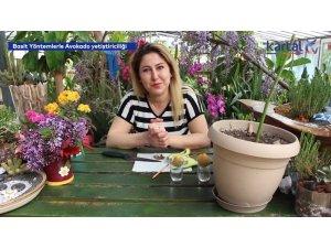 Kartal Belediyesi, evde bitki yetiştirmek isteyenler için YouTube videoları hazırladı