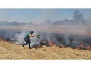 Anız yangınına ilk müdahaleyi ağaç dallarıyla yaptılar