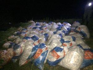 Van Gölü'nde kaçak avlanmış 16 ton ölü balık ele geçirildi