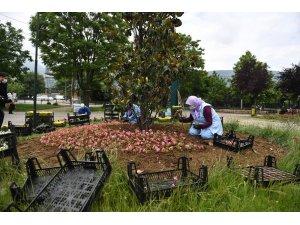 200 bin çiçek toprakla buluşuyor