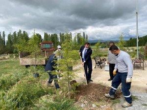 Kaymakam ve belediye başkanı şehit mezarını kendi elleriyle düzenledi