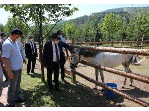 Rektör Şenocak'tan Mahmudiye Hippoterapi Uygulama ve Araştırma Merkezine ziyaret