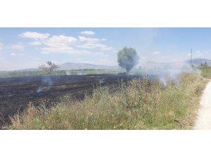 Ekin tarlasındaki yangına işçiler müdahale etti