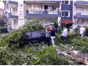 Fırtına, Alaşehir'de büyük hasara neden oldu